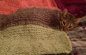 Nothing like a knit blanket to snuggle with!
