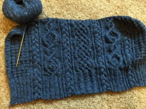 Duxbury Point Pullover, Simply Shetland 4, at Tomales Bay.