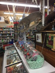 Go ahead. Nab that ice cream and candy, under the hissing stuffed cat!